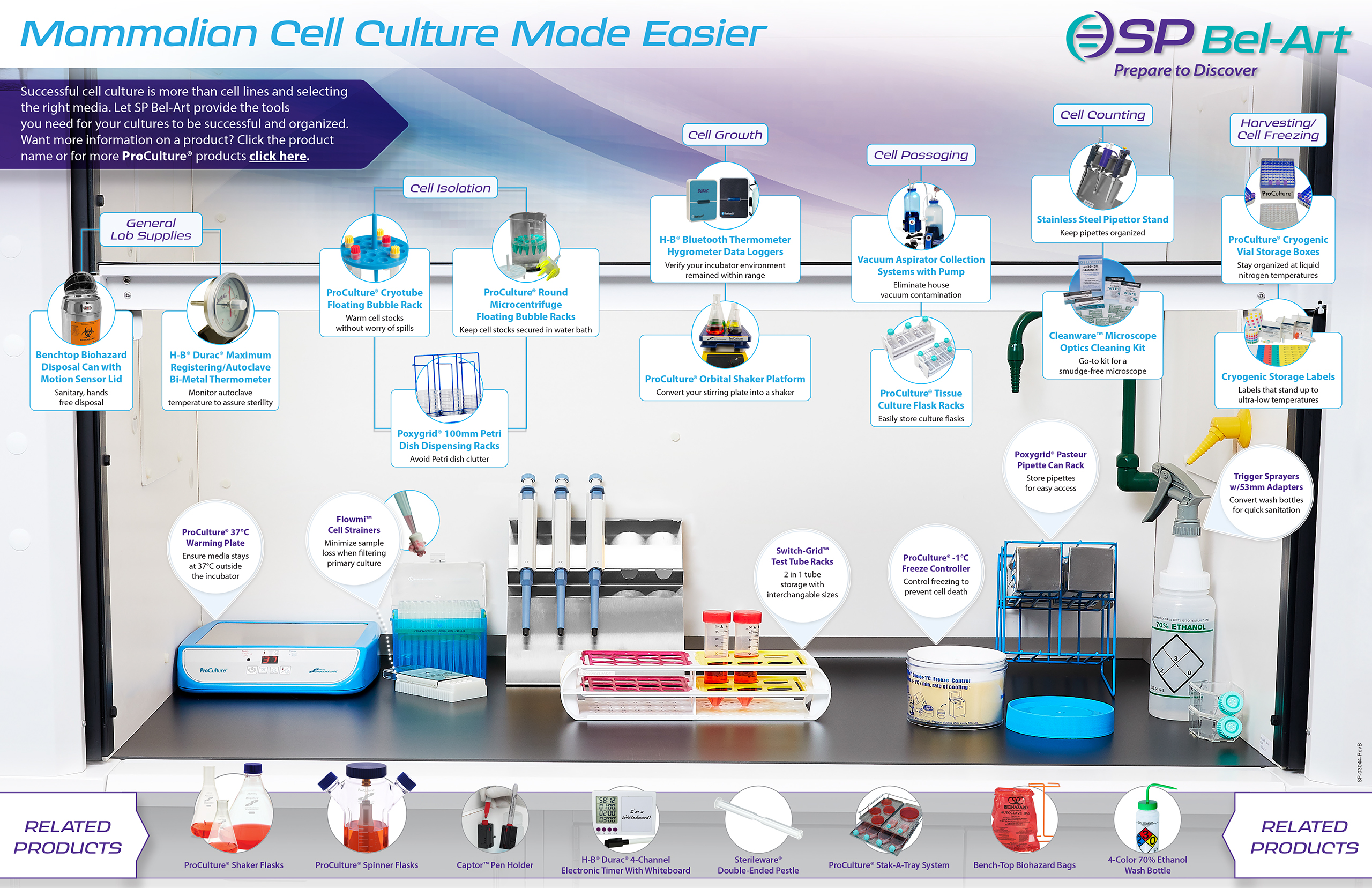 Image: Mammalian Cell Culture Made Simple