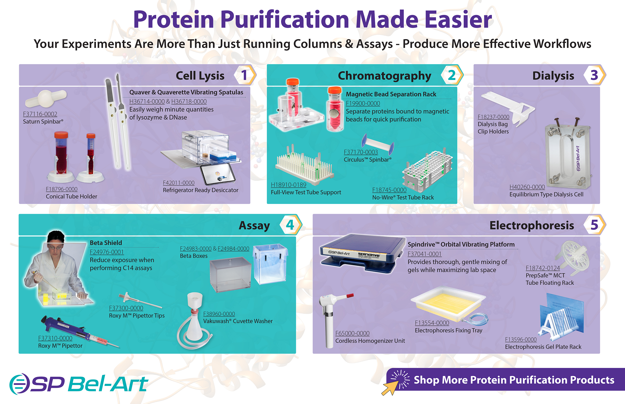 Image:  Protein Purification