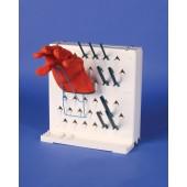Lab-Aire II Glove Holder