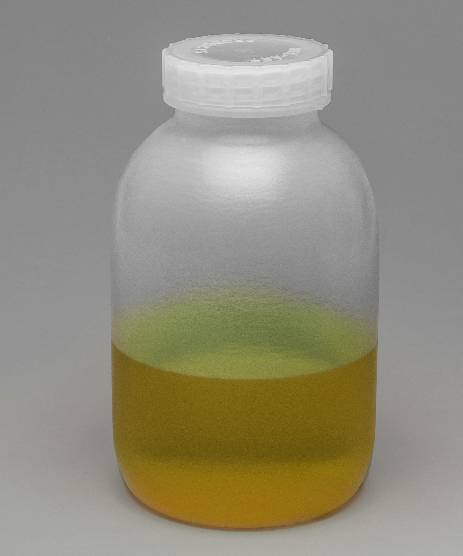 Bel-Art Wide-Mouth 2 L (½ gal) Polypropylene Mason Jars (Pack of 3)