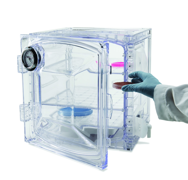 Lab Companion Cabinet Style Vacuum Desiccators